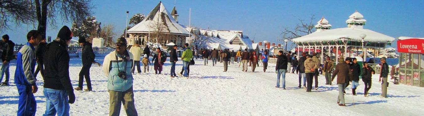 Best of Shimla Manali Tour